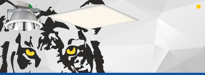 Trendlight LED